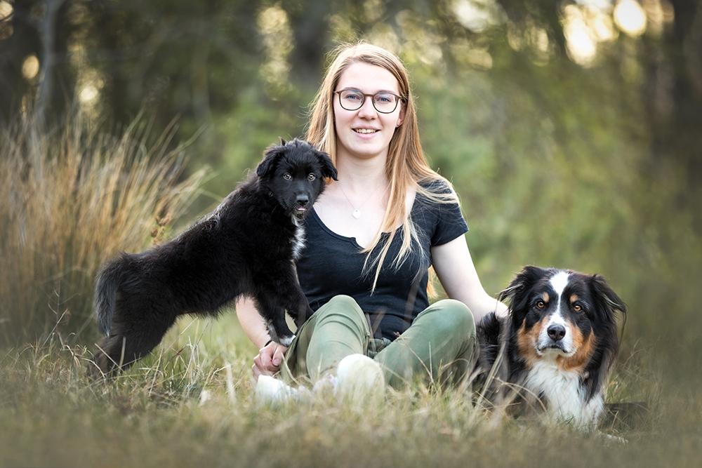 Hunde mit Besitzerin im Gras