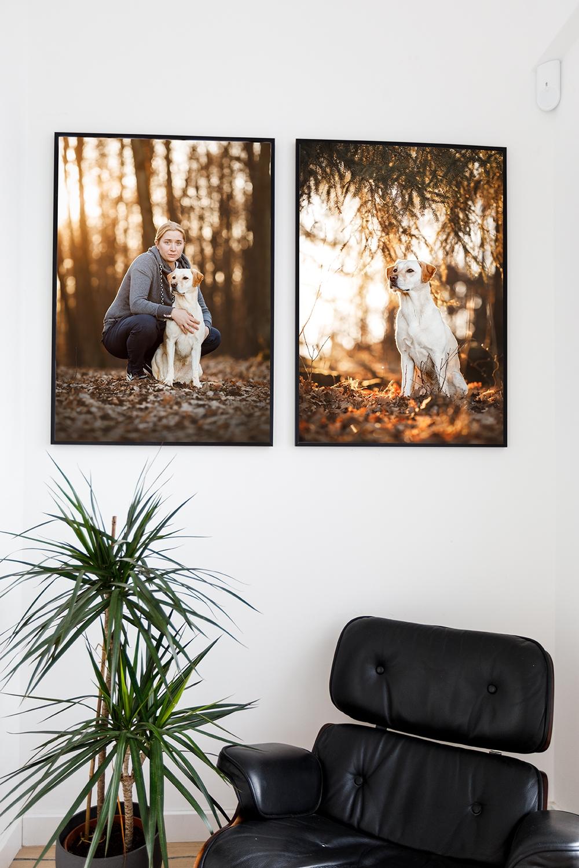 Wandbild Hund Flur